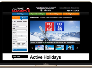 Alpine Elements SEO PPC Case Study