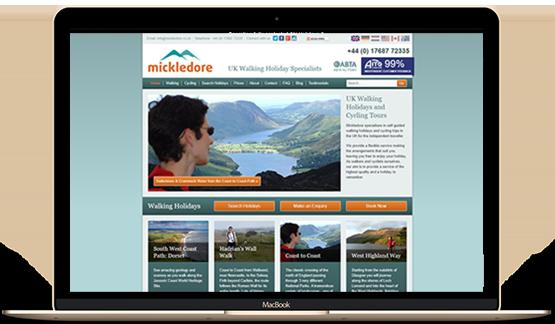 Mickledore PPC & SEO Case Study